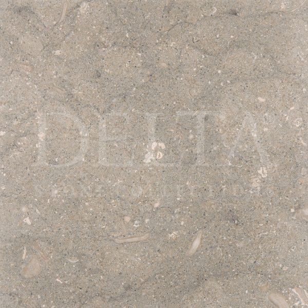 Seagrass Limestone Fotoğraf 1
